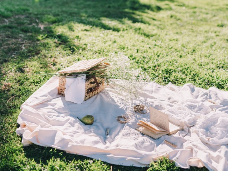 picnic setting on grass with a blanket, a book and a picnic basket